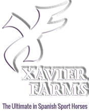 Xavier Farms — PRE / Andalusian Spanish Sport Horses